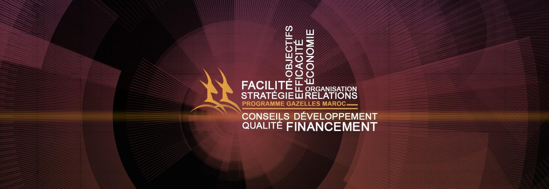 Développement des PME