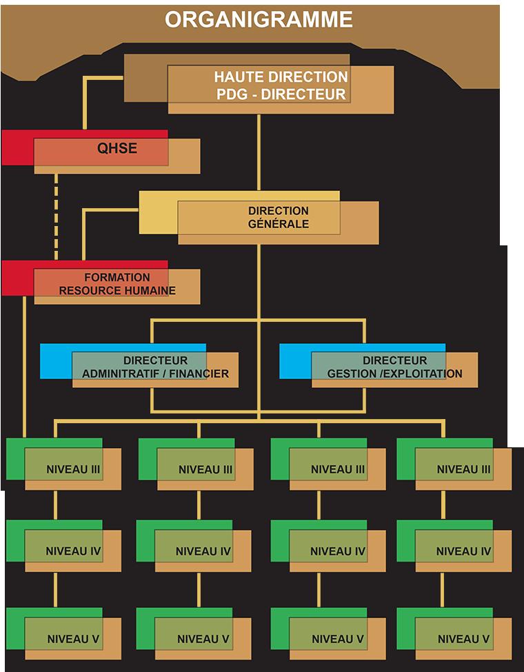 programme Gazelles Organigramme